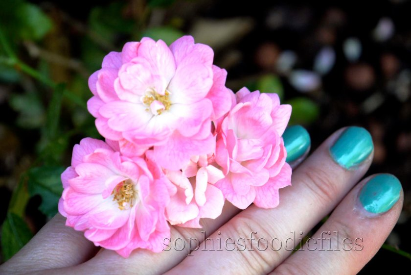 Pink wild roses! What do you prefer? The roses or the lovely nail polish??? ;)