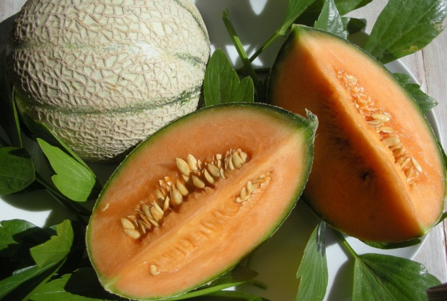 I used 2 smaller Cavaillon melons in my smoothies!