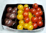 Multi coloured cherry tomatoes!