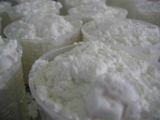 Fresh Sheep's milk ricotta!