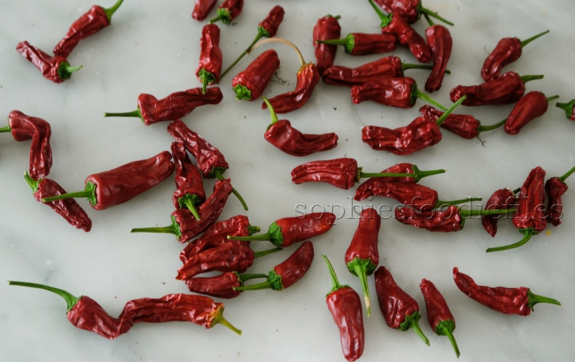 Dried red Padron chili peppers!