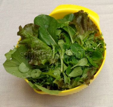 Mixed salad leaves with fresh chervil in it, straight from my own allotment!