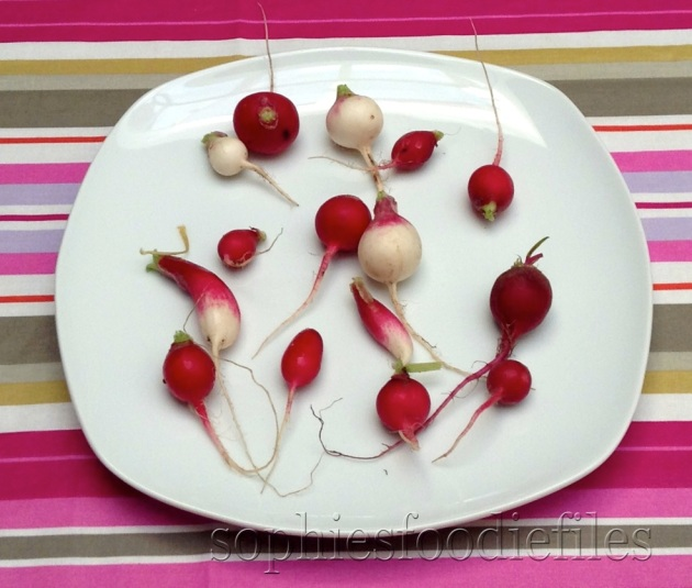 Home grown radishes!
