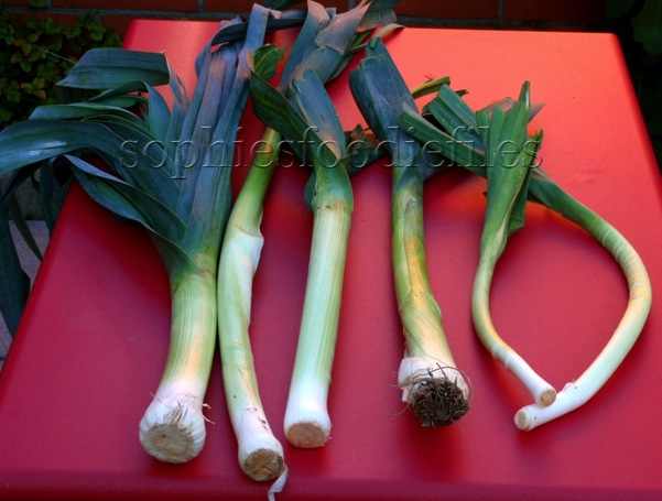 Grown Summer Leeks!