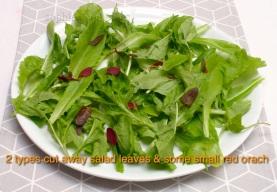 I had 6 handfuls of mixed salad leaves!