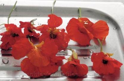 edible flowers from the east-indian cherry.